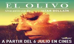 CINE El Olivo (Icíar Bollaín, España)